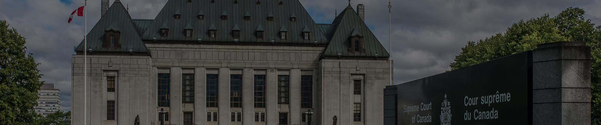 Federal-Court-Litigation